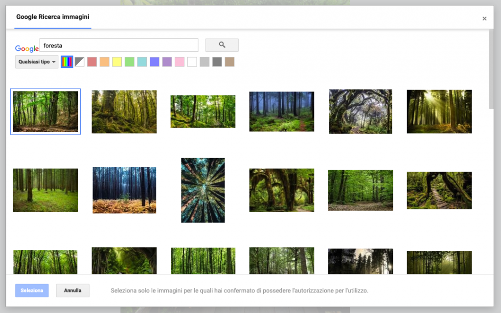 Google Immagini su bSmart